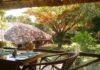 Spice Village, Linu Freddy, FamilyFoodTravels.com