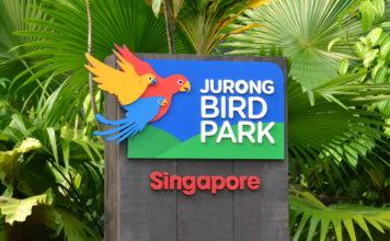Jurong Bird Park, FamilyFoodTravels.com, Linu Freddy